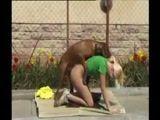 Loirinha dando pro cachorro em vídeo de zoofilia