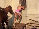 Loira safada na zoofilia com cavalo de sorte