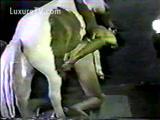 Vagabunda na Zoofilia Dando a Buceta Para Um Cavalo Pela Primeira Vez