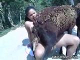 Zoofilia Mulher Dando a Buceta Para Uma Ovelha