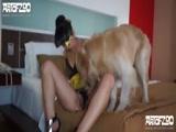 Madura Mascarada Fogosa Fodendo com Cachorro Peludo