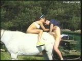 Garota ajuda namorado foder o bucetão de uma égua no cio no sitio