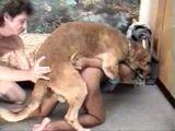 Zoofilia corno ajuda sua mulher fodendo com cachorro que soca a rola na vadia gostosa em video porno caseiro