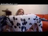 Zoofilia com Linda Loirinha fodendo com seu cachorro dotado fazendo sexo gostoso de zoofilia