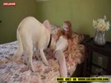 Zoofilia Ruivinha Novinha Gostosa fodendo com seu cachorro caiu na net no Zoofilia Nacional