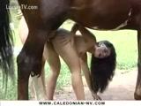 Video Zoofilia Brasileira fodendo com cavalo em Itajai caiu na net