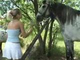Video de Zoofilia Loirinha não resite ao ver piroca de cavalo e fode gostoso com ele até levar gozada na buceta
