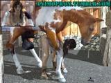 Video Zoofilia hentai porno fodendo com cavalo na Zoofilia amadora