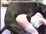 Zoofilia Brasileirinha Gostosa caiu na net fodendo com cachorro gigante