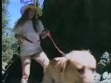 Videos zoofilia no mato com cachorro penetrando tudo dentro da buceta da dona gostosa