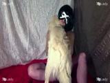 Zoofilia Uma espanhola gostosa fazendo um video Gostoso dela gozando na piroca do cachorro