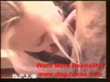 Zoofilia loira gostosa chupando cachorro até levar gozada na cara