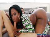 Videos de Travesti Carioca fazendo sexo com seu amante dotado arregaçando seu cu gostoso