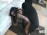 Zoofilia Gostosa Brasileira faz sexo com cachorro e posta video Porno na Xvideos Zoofilia