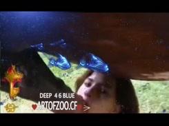 Zoofilia com cavalo gozando forte na cara da Novinha brasileira no videos de zoofilia