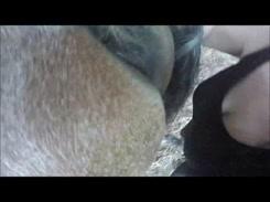 Zoofilia Mulher fodendo buceta da egua gostosa neste videos de zoofilia amadora