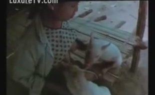 Amadora goza com filhotes de porcos mamando nos seus seios grandes