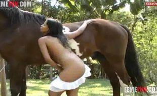 Brasileirinha tira a sainha chupa e faz sexo com cavalo garanhão