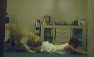 Câmera escondida flagra ninfeta fodendo com seu cão grande peludo no quarto