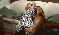 Cão engata na buceta da viúva e goza na zoofilia caseira