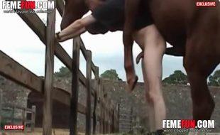 Cavalo rasga o cu do puto branquelo na fazenda
