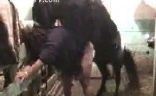 Cavalo roludo rasga a buceta da coroa devassa e enche de porra