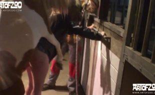 Cornuda filma esposa gordinha fodendo com animais na fazenda