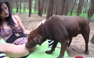 Gostosa faz sexo com cão marrom no bosque da fazenda escondida