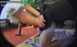 Homem coloca câmera escondida e flagra esposa loira gozando com seu cão dotado