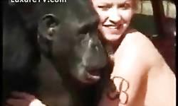 Loira vadia fazendo sexo com gorila dotado