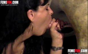 Marido coroa faz esposa milf mamar no cacete enrome de um cavalo