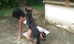 Morena amadora empina bem a cola e engole vara do cão de quatro na xota