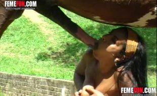 Morenaça chupa cacete enorme do cavalo e enterra na xota