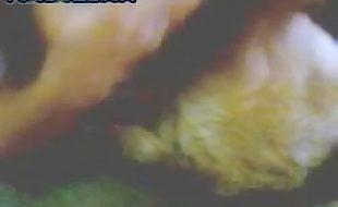 Mulher safada beijos de língua e sexo oral no seu cachorro de estimação
