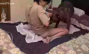 Mulher safada ensina seu cão a lamber e comer sua buceta aberta