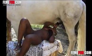 Negra Africana gostosa chupa e bebe muita porra do cavalo garanhão