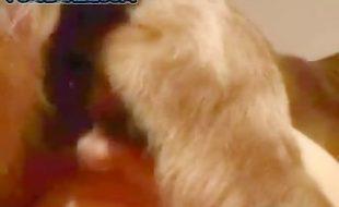 Safada deixa seu cão penetrar e gozar muito na sua racha