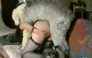 Safada fazendo sexo gostoso com cão peludo