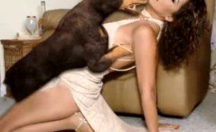 Seleção de cenas com mulheres ousadas trepando com animais