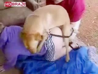 Zoofilia Caseira com casal fodendo com cachorro em Cachoeira ...