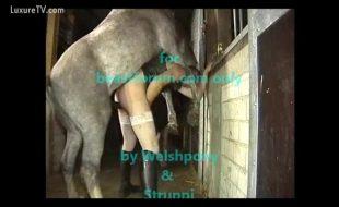 Zoofilia putão empina o rabo e engole rola enorme do cavalo dentro do cu aberto