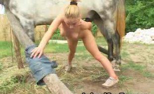 Zoofilia real loirinha empina bumbum soca pau do cavalo na xota geme e goza